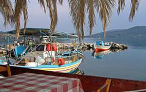IGFA Lesvos Rent a Car